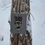 camera naturea vinter